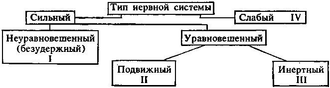 Схема типов по павлову