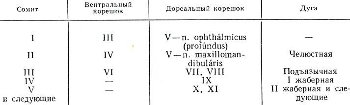 по номерам от I до XII.