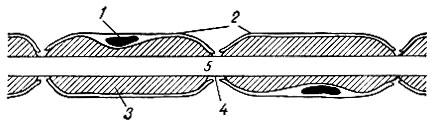 Инструменты для препарирования стр. 2.