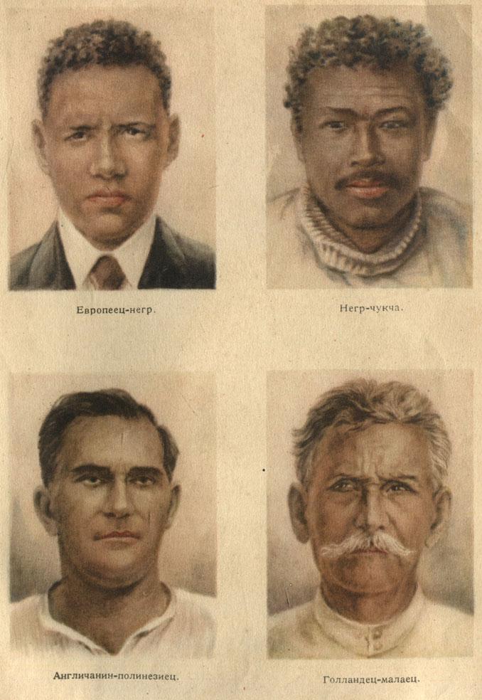 Негры и их расы