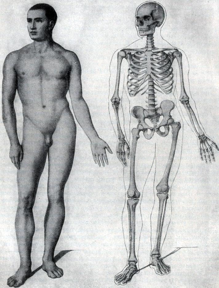 фото женщин в нижним бельепорно